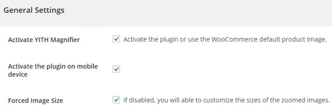Settings of YITH WooCommerce Zoom Magnifier