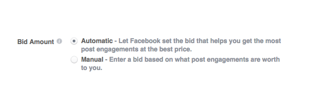 how much do facebook ads cost - bidding strategies