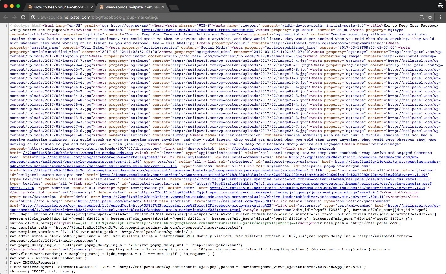 h1 tag - view source code