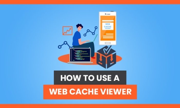 How to Use a Web Cache Viewer: Everything You Need to Know