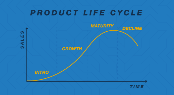 The 5 Stages of the Product Life Cycle