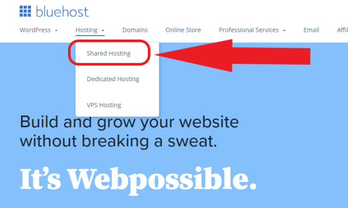 Bluehost shared hosting menu tab for How to Buy a Domain Name